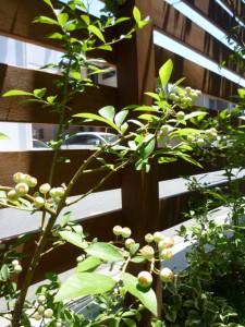 work-2011-03_07.JPG
