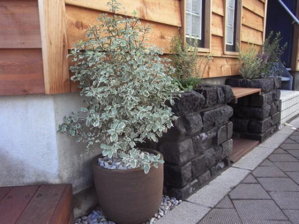 for-garden-06-04